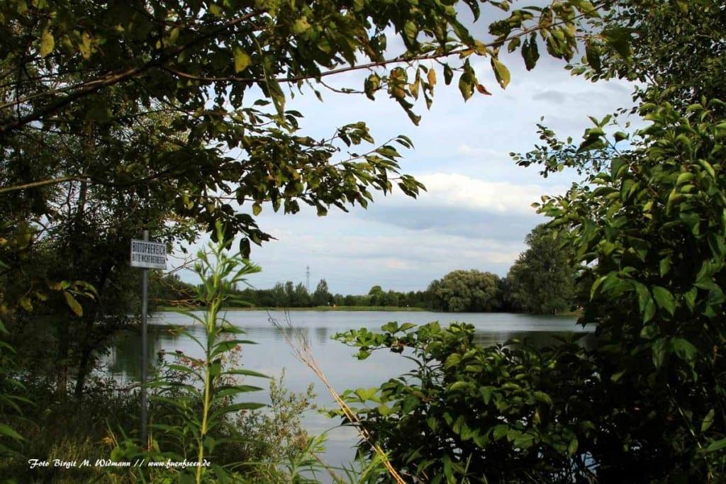 Der Birkensee in der Langwiedr Seenplatte
